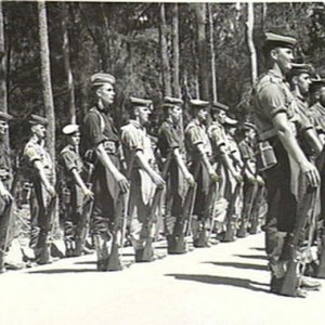 RAN Commandos on parade